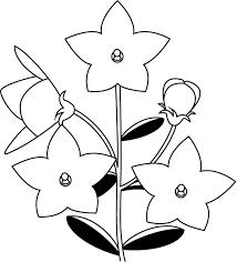 夏の花1 18 キキョウ 花の無料イラスト素材 イラストポップ