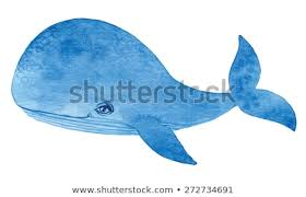 blue whale watercolor cartoon hand drawing vector paint