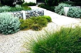 backyard design san diego. Perfect Diego Landscape Design San Diego Drought North County  And Backyard Design San Diego L