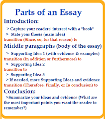 essay organization box showing the parts of an essay the introduction body paragraphs supporting ideas