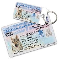 British Cute Id Columbia Tags Driver Dog License Pet Wallet 1 Card And Personalized Pooch