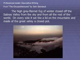 descriptive writing  a descriptive essay tells what something  professional model descriptive writing from the chrysanthemums by john steinbeck the high grey flannel