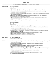 Resume Bartender Lead Bartender Resume Samples Velvet Jobs 8