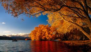 Top 4 Reasons to Visit <b>New</b> Zealand during the <b>Autumn</b>