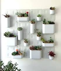 indoor vertical garden. Indoor Wall Gardens Garden Vertical Ideas
