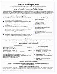 Project Manager Resume Summary Examples Free Download