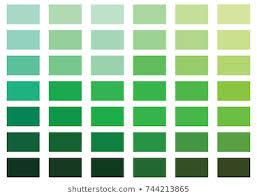 Pantone Green Color Chart Pantone Color Chart Stock Illustrations Images Vectors
