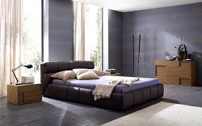 Paint Colors For Mens Bedrooms Small Mens Bedroom Ideas