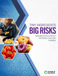 nanotechnology tiny ingredients big risk report cover image of hexagons a child eating macaroni and