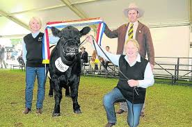 nice carcase judy mckinnon clanfiggon mt torrens sashes the grand chion belted