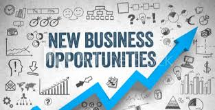 Individual Consultant Business Opportunities, in Pan India, Food, | ID:  21776061597