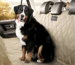 other car seat covers we love perfect pet seat cover