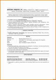 Examples Of Resume Profiles - Unitedijawstates.com