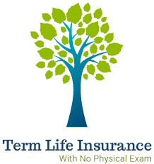 You have the option to renew each year. No Health Questions Life Insurance Best Carriers Quotes
