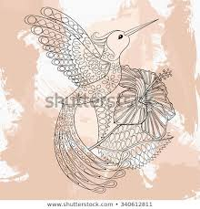 Zentangle Vector Hummingbird Hibiskus Tattoo Design Stock Vector