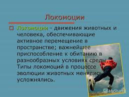 Презентация на тему Движение Движение один из признаков живых  3 Локомоции Локомоции