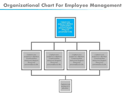 Download Organizational Chart For Employee Management Flat