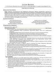 Medical Resume Cool Medical Resume Examples Resume Professional Writers
