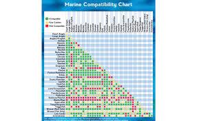 Actual Fish Tank Mates Chart Marine Aquarium Fish