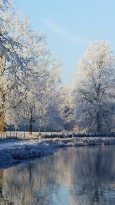 Frozen Mist Snow Forest iPhone 8 ...