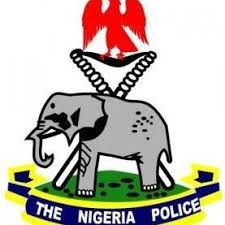 Image result for nigeria police force pictures