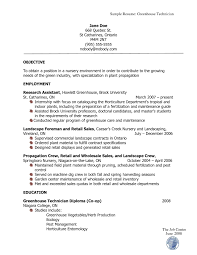 Transform Professional Resume Should Look Like With Additional How