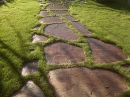 patio stones with grass in between. Simple Stones Iu0027ve Laid Flagstone In The Past And Understand Basics Of Grade Setting  Stones Filling With Polymeric Going Normal Way Digging  For Patio Stones With Grass In Between E