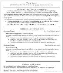 Executive Resume Template Word Microsoft Word Executive Resume Template Therpgmovie 4