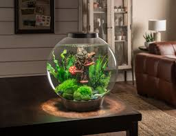 Beautiful Aquarium - biOrb CLASSIC 30, which is an 8 US Gallon, acrylic  aquarium