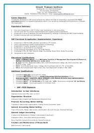 Sap Hr Resume Sample Magnificent Sap Consultant Sample Resume Simple Resume Examples For Jobs