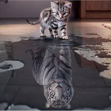 100% Full 5D Diy Daimond Painting Cats To <b>Tiger 3D</b> Diamond ...