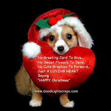 cute merry christmas wallpaper dogs. Contemporary Dogs Cute Merry Christmas Wallpaper Dogs 01  Throughout I