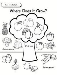 8d4e3b47525a443e5042dc6470460d64 growing vegetables fruits and vegetables worksheet 1215 best images about english tools on pinterest english on watsons go to birmingham worksheets