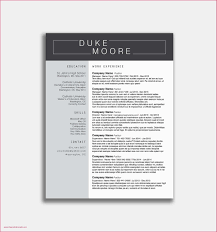 Resume Samples Doc Download Professional Resume Samples Download Best Resume Samples Doc