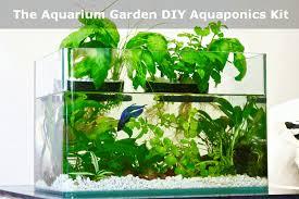 aquarium garden.  Aquarium Aquarium Garden DIY Aquaponics Kit Gif Throughout U