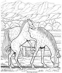 Small Picture 180 best Horse Lovers Coloring Books images on Pinterest
