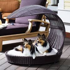 let your canine friends rest luxuriously under the sun on the outdoor dog chaise lounger from