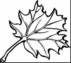 Small Picture remarkable fall leaves printable coloring pages with free