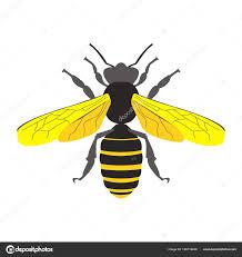 мед пчелы символ вектор векторное изображение Lilalove 199719446
