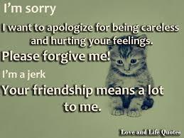 im sorry please forgive me es