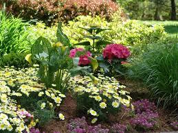 perennial flower garden plans