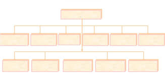 Cag Organisation Chart Pag A E Organization Chart