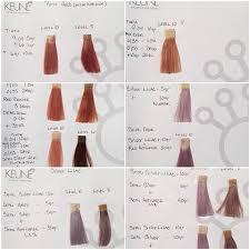 Keune Red Hair Color Chart Keune Tinta Color Formulas In 2019 Hair Color Formulas