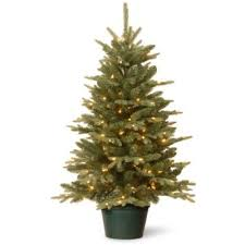 National Tree 3-Foot Everyday Collections Pre-Lit Artificial Christmas Tree  with Clear Lights