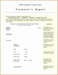 Non Profit Treasurer Report Template Treasurer Report Template Lorgprintmakers Com