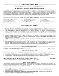 Appealing It Program Manager Resume Sample Displaying Core