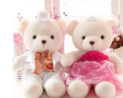 wide teddy bear hdq pictures