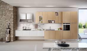 Kitchen Cabinet Insert Kitchen Cabinet Wall Units Dramalevel