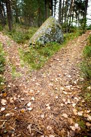 robert frost s commonly misinterpreted the road not taken and  two paths robert frost