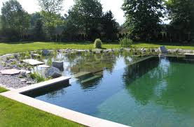 Natural looking in ground pools Natural Garden Natural Swimming Pools Good Housekeeping Natural Swimming Pools Whiting Construction